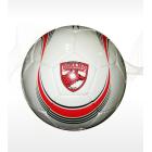 Football PVC 2PLY DINAMO