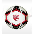 Football PVC 4PLY DINAMO